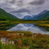 Аляска, начало осени(2) :: Gregory Regelman