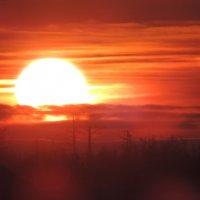 закат в Новом Уренгое :: Дмитрий Рузаев