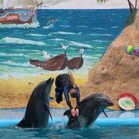 Дельфины и русалка! :: Николай Кононцев