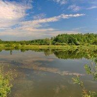Озеро :: Татьяна Баценкова