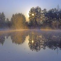 Туман на пруду :: Алексей Окунеев