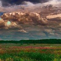 Когда то дождливо :: Олег Малянов