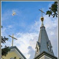 Католические устремления :: Юрий Муханов