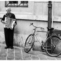 Уличный музыкант :: Sergei Shkolny