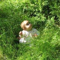 В траву посадили :: Татьяна Георгиевна