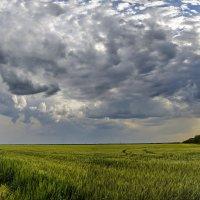 Вихри небесные :: Валерий Наумов