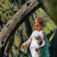 ещё одна подсмотренная невеста :: Александр Шурпаков
