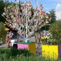 Деревья всякие нужны... :: Татьяна Черняева