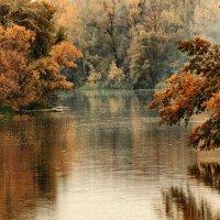 Река. октябрь :: Людмила Селегенева