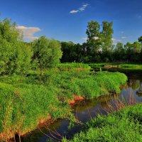 Весенний день :: Андрей Куприянов