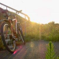 Велосипед :: Дамир Фото73