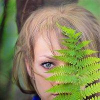 Beauty fern :: Любовь Стаценко