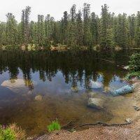 на Медвежьем озере :: Дамир Белоколенко