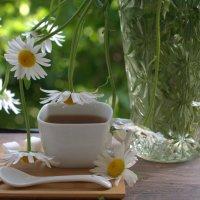 Ромашковый чай :: ФотоЛюбка *