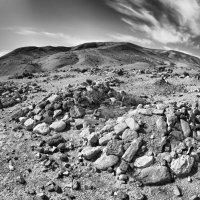 Бедуинское кладбище в Негеве :: Леонид Спектор