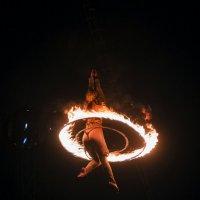 В цирке :: Oleg Khot