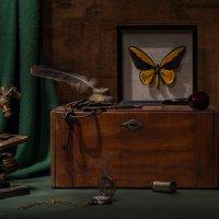 Учёный натюрморт с микроскопом и бабочкой :: Светлана Л.