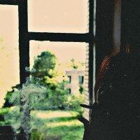#жизнь1 :: Анастасия Болюбаш