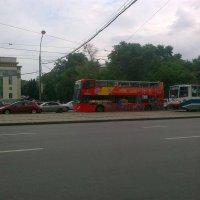 на улицах города... :: Галина R...