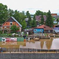 Наводнение 2014 года в Бийске. :: Владимир Михайлович Дадочкин