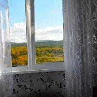 За окном сентябрь... :: Александр Кокоулин
