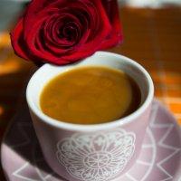 кофейная роза :: Анастасия Садовская