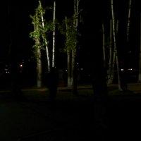 ночной город :: Юлия Маслова