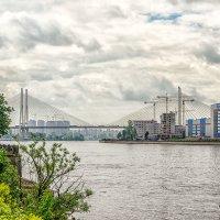Вид на вантовый мост :: Владимир Горубин