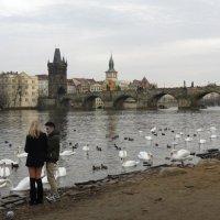 Прага :: Людмила