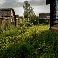 Вечерний свет-2 :: Sergey Serebrykov