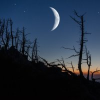 Между сумерками и ночью :: Эдуард Ефремов