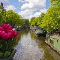 Каналы Амстердама. :: Petr Milen