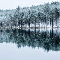 Озеро :: Екатерина Куликова