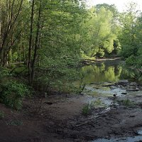 река Химка :: Тарас Золотько