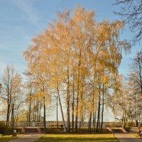 Осень в городе. :: Виктор Евстратов