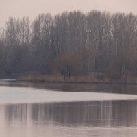 водная рябь :: Дмитрий Потапов