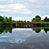 Мост и речка :: Татьяна Королёва