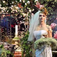 невеста :: Елена Грибакина
