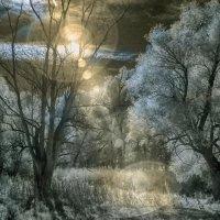 Охота на солнечного зайчика :: Alexander Varykhanov