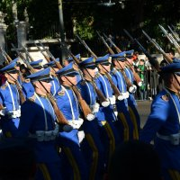 на параде :: Vitalet