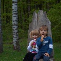 Забавные близнецы :: Андрей Мунин