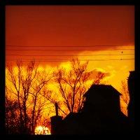 Захід сонця. :: Володимир Цепін