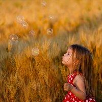 Пшеничка :: Наталья Дари