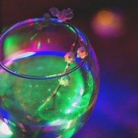 Радужный ландыш :: Nina Zhafirova