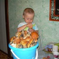 пришли с грибами :: Петр Лазарчук
