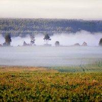 Моей деревне снятся сны :: Валерий Талашов
