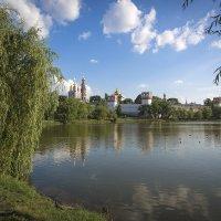 Летний пейзаж :: Андрей Шаронов