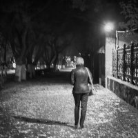 Прогулка с тенью.. :: Yuriy Puzhalin