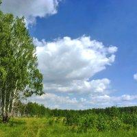 Плывут облака :: Александр Садовский