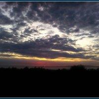 Вечернее небо в селе Шестаково Воронежской области :: Ольга Кривых